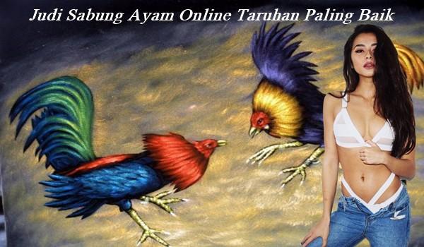 Judi Sabung Ayam Online Taruhan Paling Baik